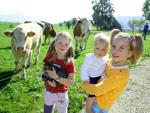 Bauernhof und Weide