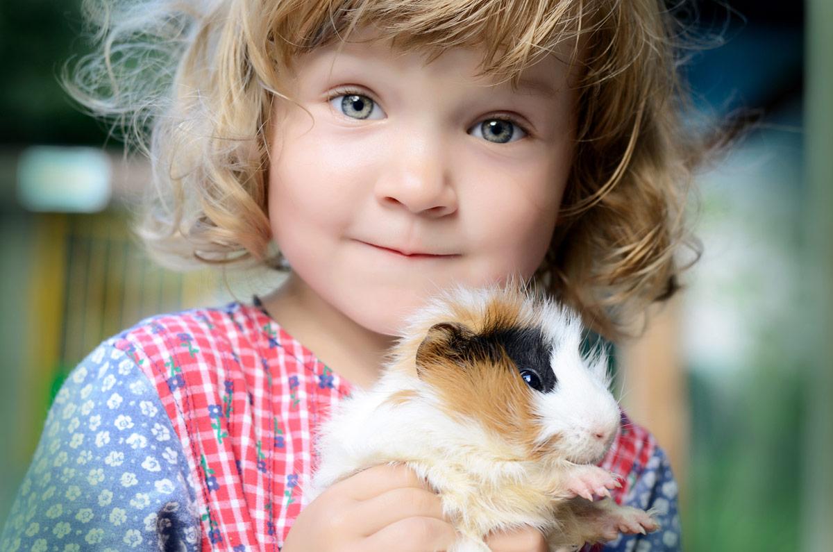Kinder Konnen Sehr Viel Von Ihrem Haustier Lernen Kindaktuell At