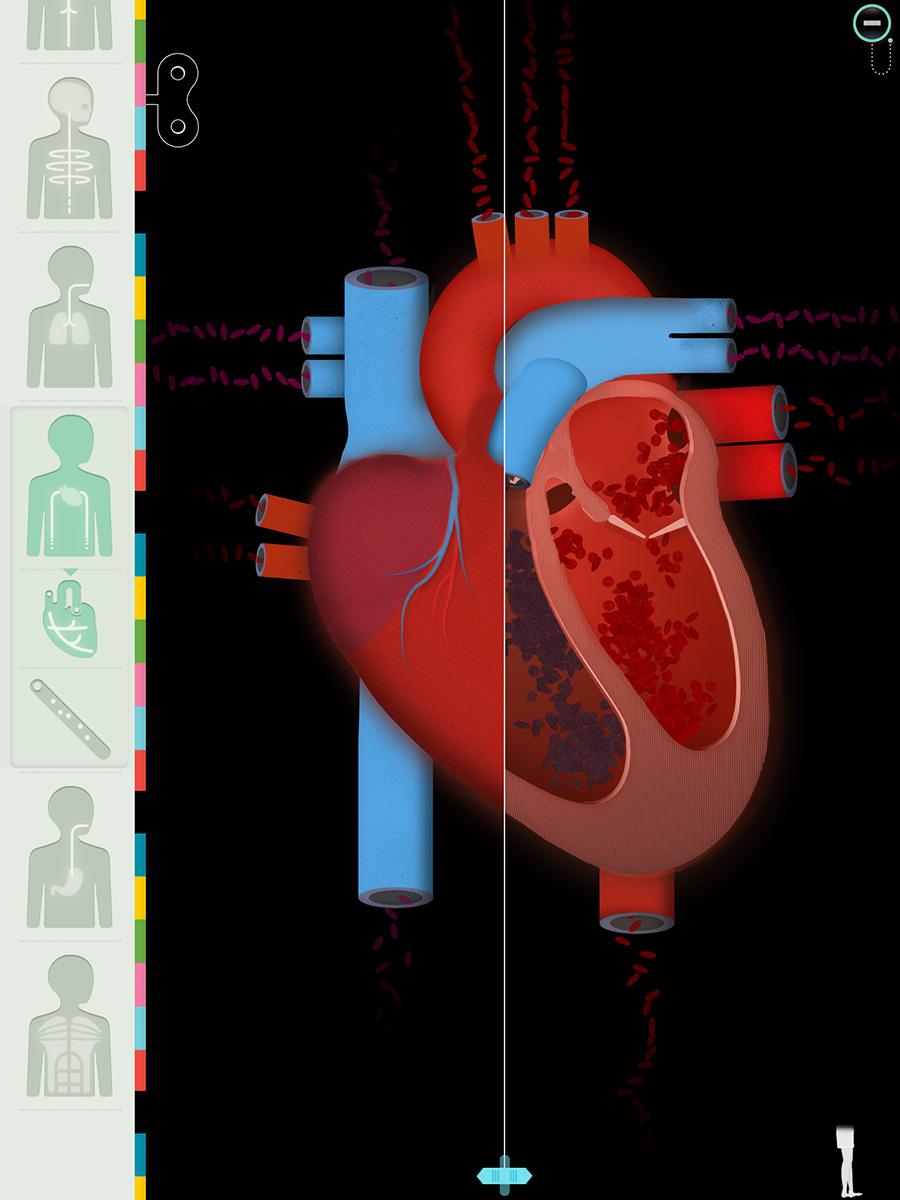 """Der menschliche Körper"""" eine Anatomie-App für Jung und Alt ..."""